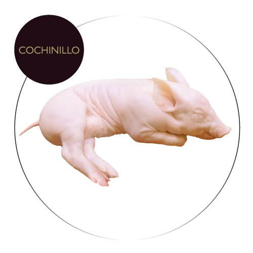 Cochinillo_COLEAR_131117